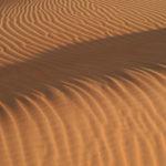 610-01598855Model Release: NoProperty Release: NoUnited Arab Emirates, Dubai, desert