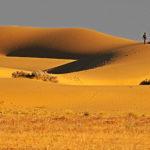 Sand Dunes - Jaisalmer